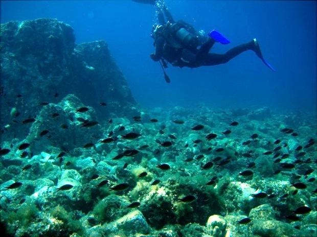 haramida-plaji-scuba